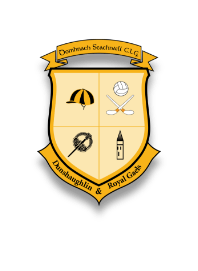 First Year Meet and Greet - Dunshaughlin Community College